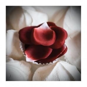 Bijoux Rose Petal Explosion