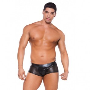 Allure Zeus Wet Look Shorts