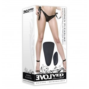 Hidden Pleasure Remote Controlled Vibrating Knickers